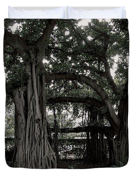 Hawaiian Banyan Trees Duvet Cover by Daniel Hagerman