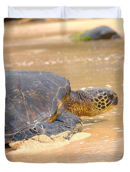 Hawaiian Green Sea Turtle 2 Duvet Cover by Brian Harig