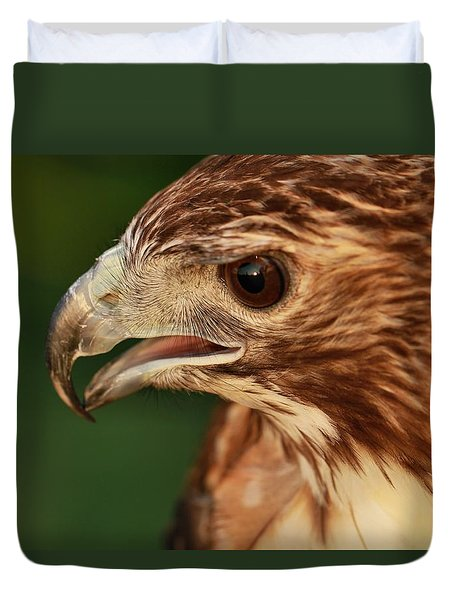 Hawk Eyes Duvet Cover by Dan Sproul