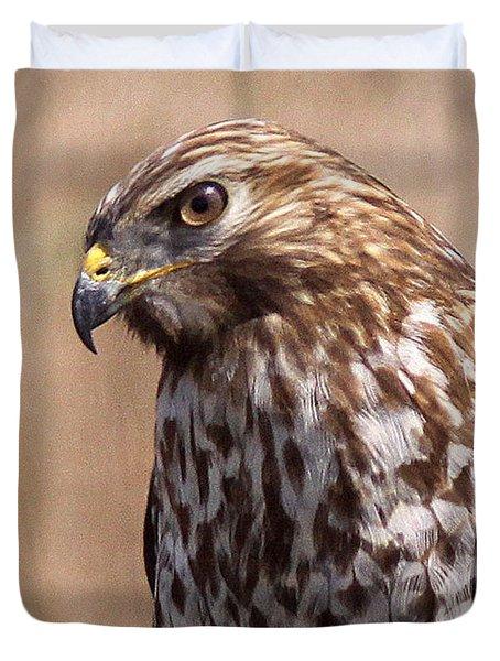 Hawk - Sphere - Bird Duvet Cover by Travis Truelove