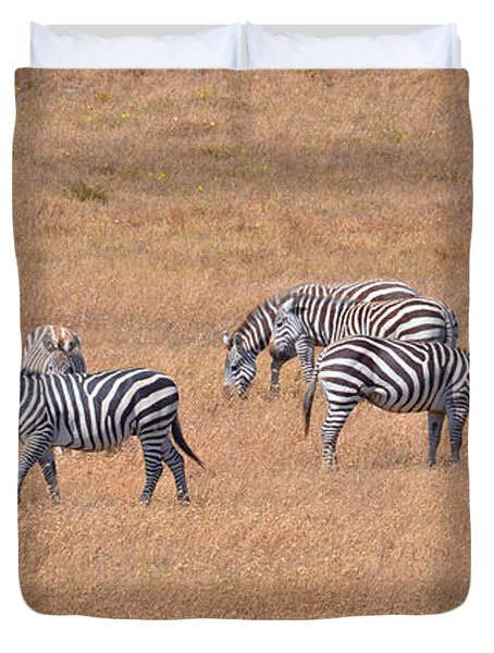 Hearst Castle Zebras Duvet Cover by Lynn Bauer