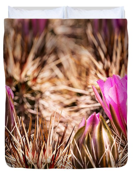 Hedgehog Cactus Flower And Buds Duvet Cover by  Onyonet  Photo Studios