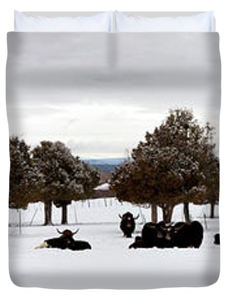 Herd Of Yaks Bos Grunniens On Snow Duvet Cover by Panoramic Images