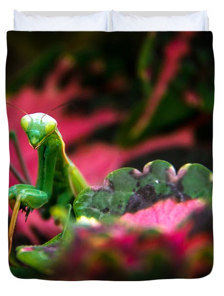 Here I Am Duvet Cover by Robert Bales