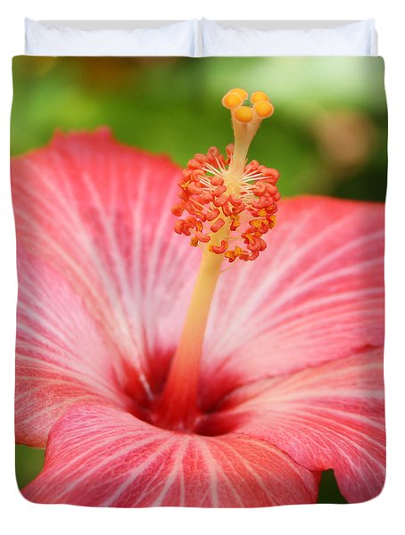 Hibiscus - Square Duvet Cover by Carol Groenen