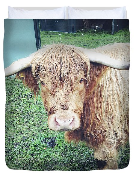 Highland cow Duvet Cover by Les Cunliffe