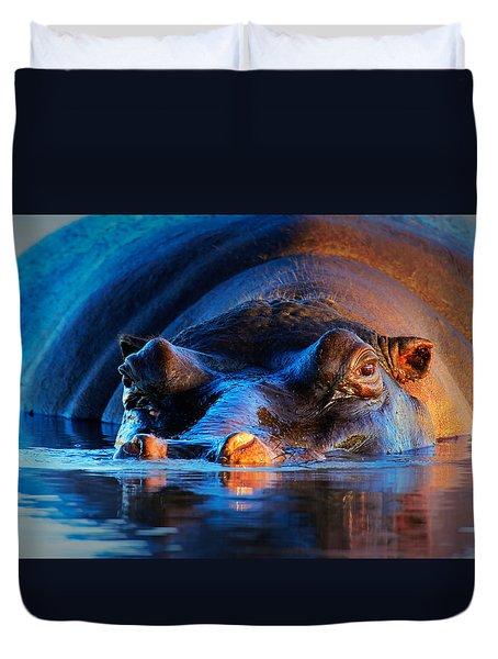 Hippopotamus  At Sunset Duvet Cover by Johan Swanepoel