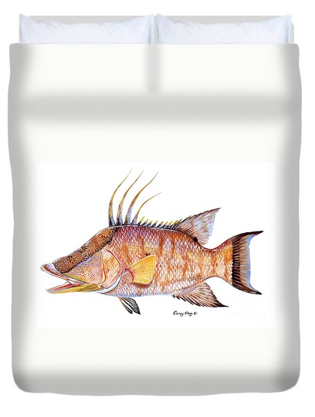 Hog Fish Duvet Cover by Carey Chen