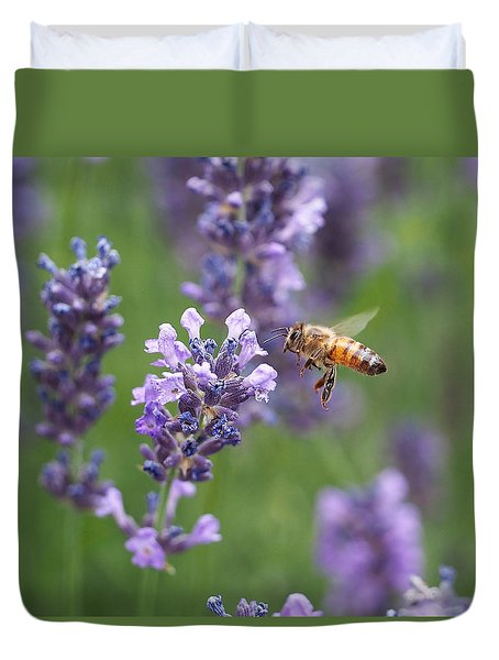 Honey Bee And Lavender Duvet Cover by Rona Black