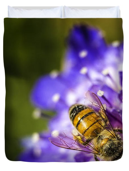 Honey Bee Duvet Cover by Caitlyn  Grasso