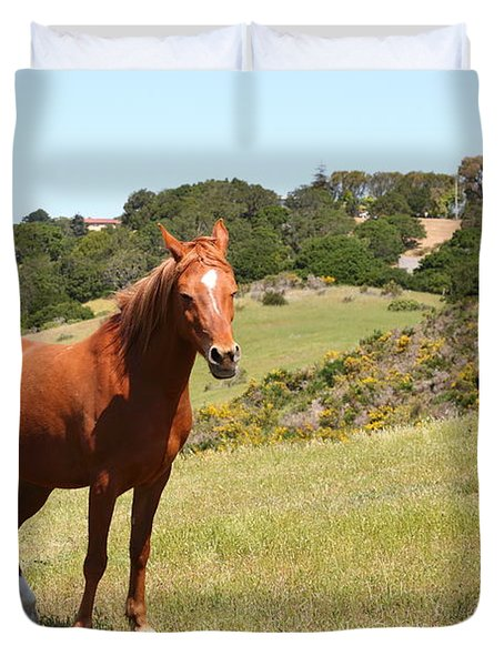 Horse Hill Mill Valley California 5D22679 Duvet Cover by Wingsdomain Art and Photography