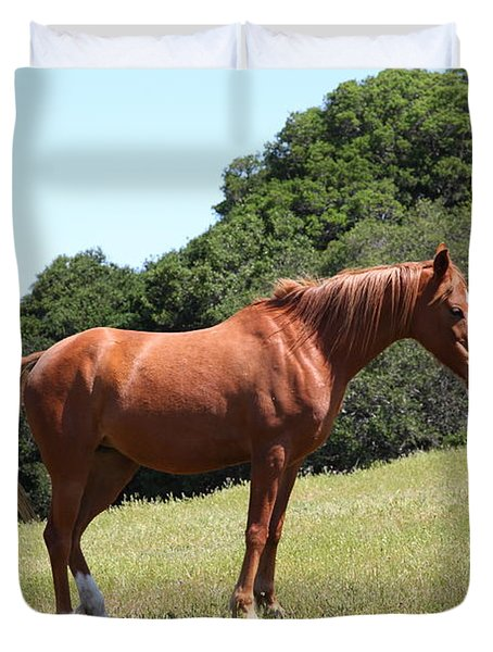 Horse Hill Mill Valley California 5d22683 Duvet Cover by Wingsdomain Art and Photography