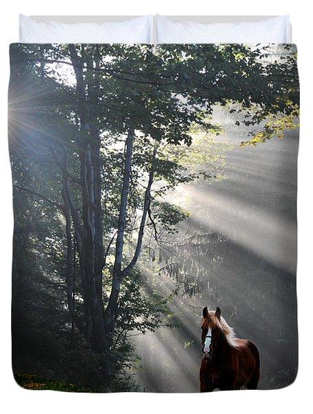 Horse Running In Dandelion Field With Streaming Sunlight Duvet Cover by Dan Friend