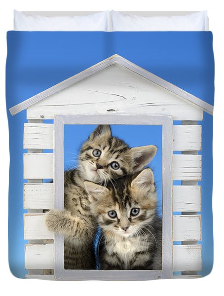 House Of Kittens Ck528 Duvet Cover by Greg Cuddiford