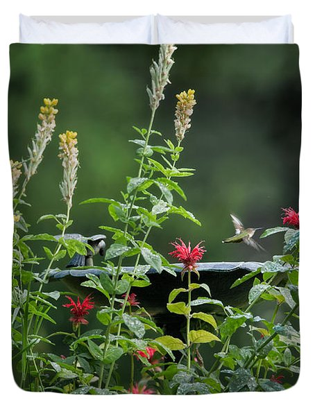 Humming Bird Duvet Cover by Bill  Wakeley