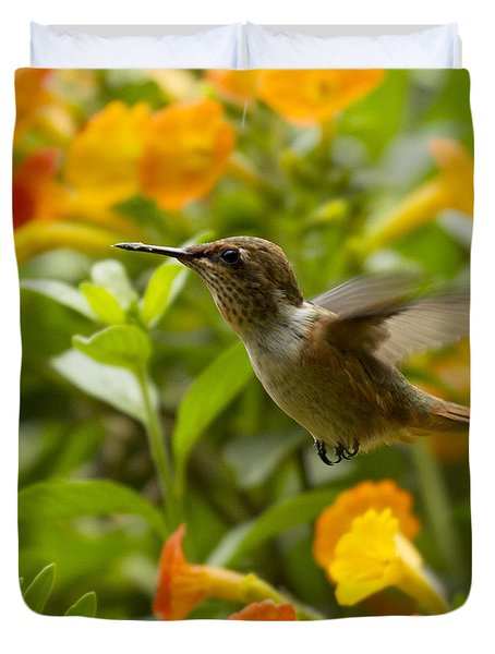 Hummingbird Looking For Food Duvet Cover by Heiko Koehrer-Wagner