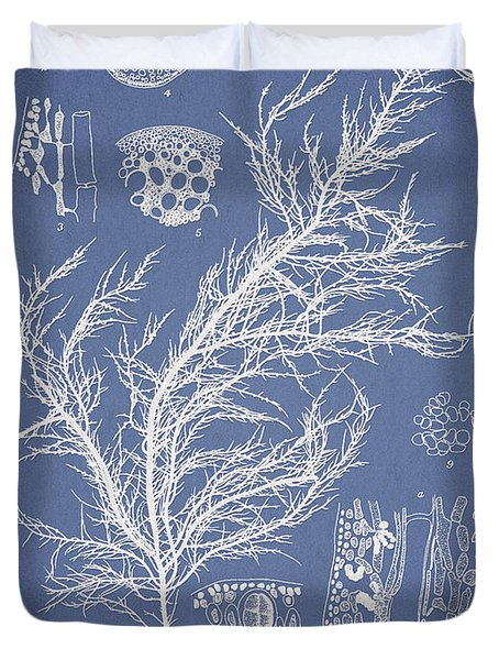 Hyalosiphonia caespitosa Okamura Duvet Cover by Aged Pixel