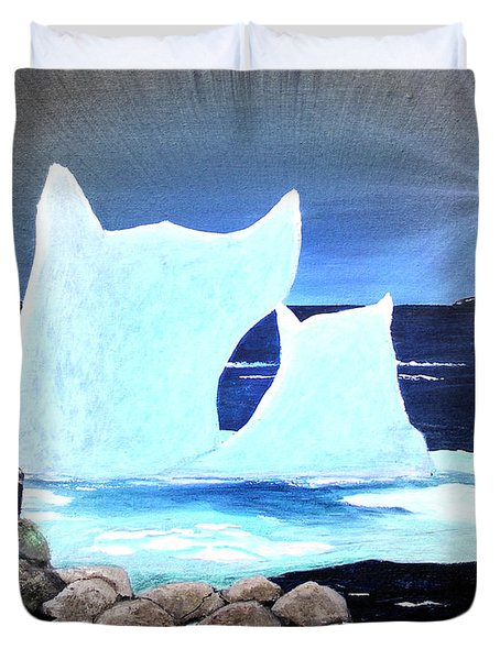 Icebergs at Sunset Duvet Cover by Barbara Griffin