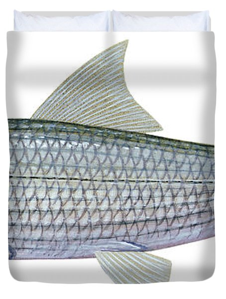Illustration Of A Bonefish Albula Duvet Cover by Carlyn Iverson