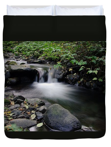 In Slow Pools Where Serenity Abounds Duvet Cover by Jeff Swan