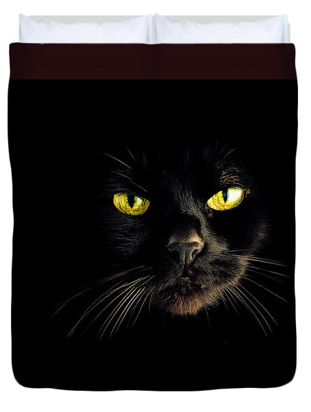 In the shadows One Black Cat Duvet Cover by Bob Orsillo