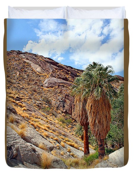 Indian Canyons View With Two Palms Duvet Cover by Ben and Raisa Gertsberg