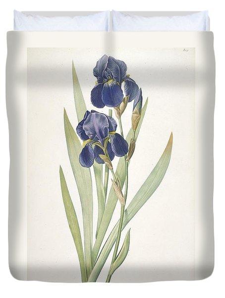 Iris Germanica Bearded Iris Duvet Cover by Pierre Joseph Redoute