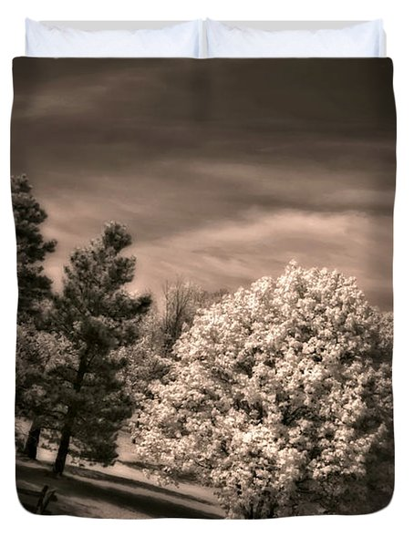 ...is But A Dream Duvet Cover by Steve Harrington