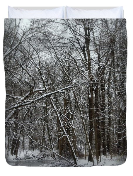 Its A Beautiful Winter Duvet Cover by Kay Novy
