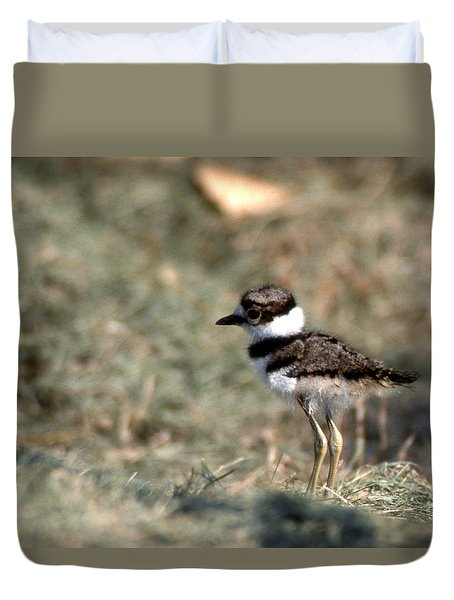 Its A Killdeer Babe Duvet Cover by Skip Willits