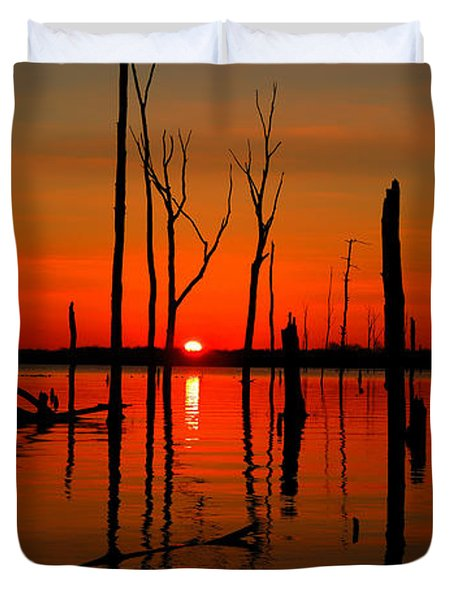 January Sunrise Duvet Cover by Raymond Salani III