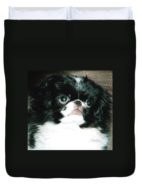 Japanese Chin Puppy Portrait Duvet Cover by Jim Fitzpatrick