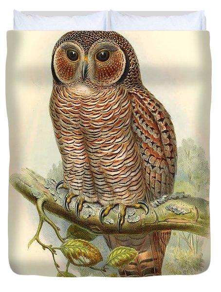 John Gould Owl Duvet Cover by Gary Grayson