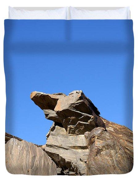 Joshua Tree Monster Rock Duvet Cover by Barbara Snyder