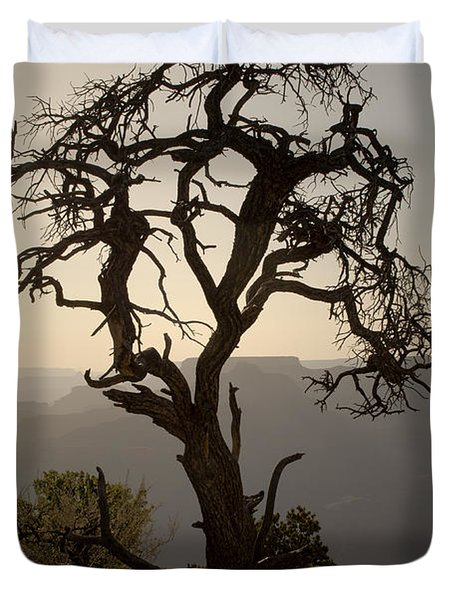 Juniper Tree at Grand Canyon Duvet Cover by David Gordon