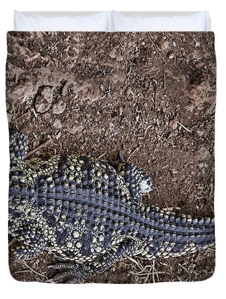 Juvenile African Crocodile Duvet Cover by Douglas Barnard