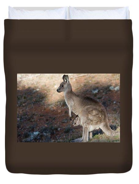 Kangaroo And Joey Duvet Cover by Steven Ralser
