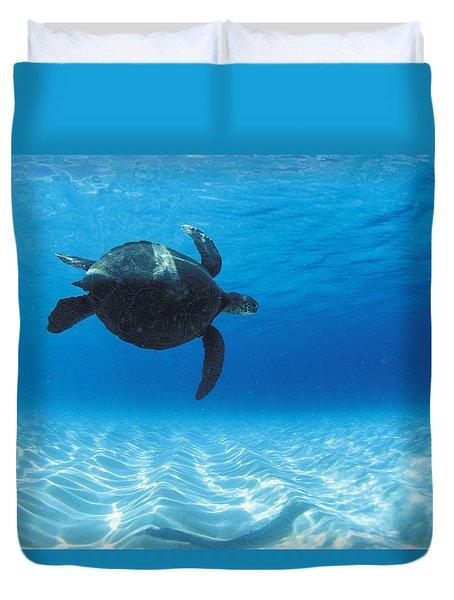 Keiki Turtle Duvet Cover by Sean Davey