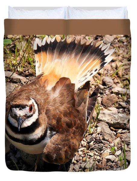 Killdeer On Its Nest Duvet Cover by Chris Flees