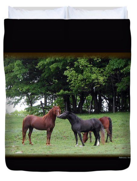Kissing Cousins- The Paso Fino Stallions Duvet Cover by Patricia Keller