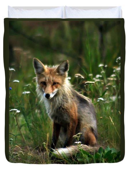 Kit Red Fox Duvet Cover by Robert Bales