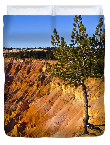 Know Your Roots - Bryce Canyon Duvet Cover by Jon Berghoff