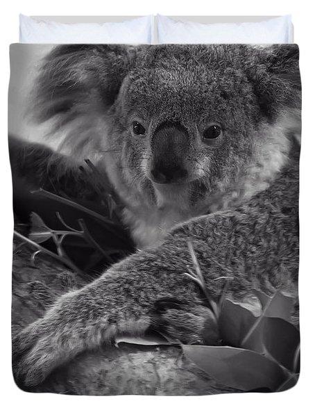 Koala Duvet Cover by Chris Flees