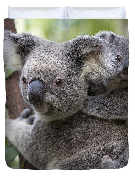Koala Joey On Mothers Back Australia Duvet Cover by Suzi Eszterhas