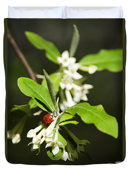 Ladybug And Flowers Duvet Cover by Christina Rollo