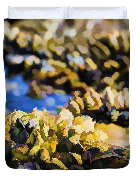 Laguna Beach Tide Pool Pattern 4 Duvet Cover by Scott Campbell