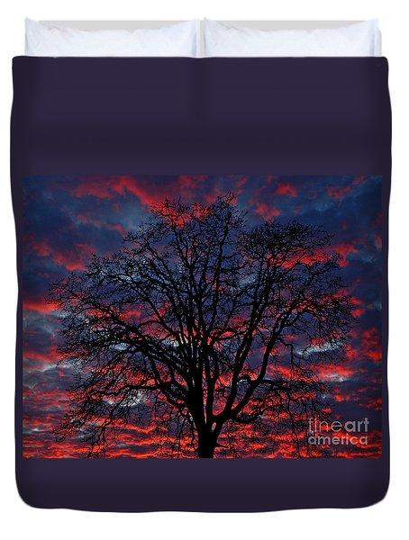 Lake Oswego Sunset Duvet Cover by Nick  Boren