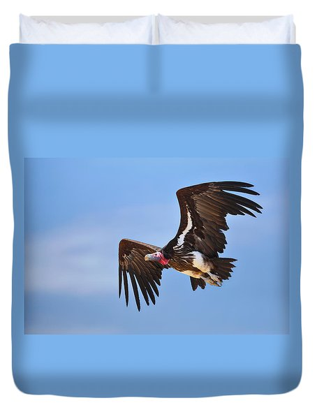 Lappetfaced Vulture Duvet Cover by Johan Swanepoel
