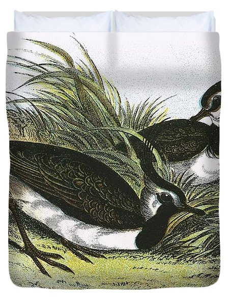 Lapwing Duvet Cover by English School