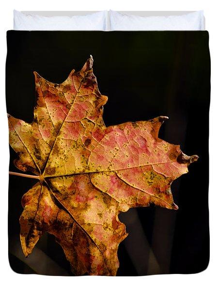 Last Maple Leaf Duvet Cover by LeeAnn McLaneGoetz McLaneGoetzStudioLLCcom